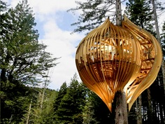 mike reed tree house